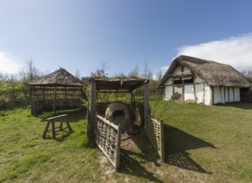 Farm at Jarrow hall