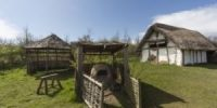 Anglo Saxon Farm and Animals
